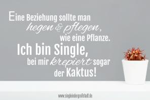 Spruch Single Weil Amor Mich Mobbt