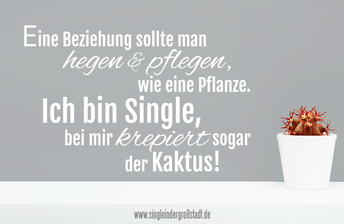 beziehung vs single